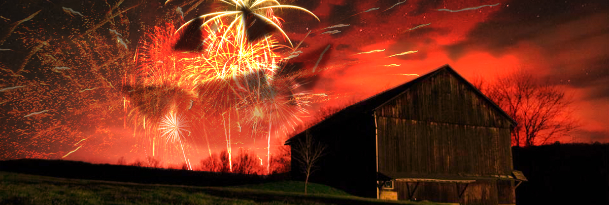 how to buy tnt fireworks online